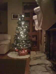 Smith Family Christmas Tree 2009